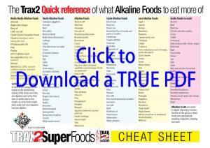 Download the Alkaline foods Cheat sheet