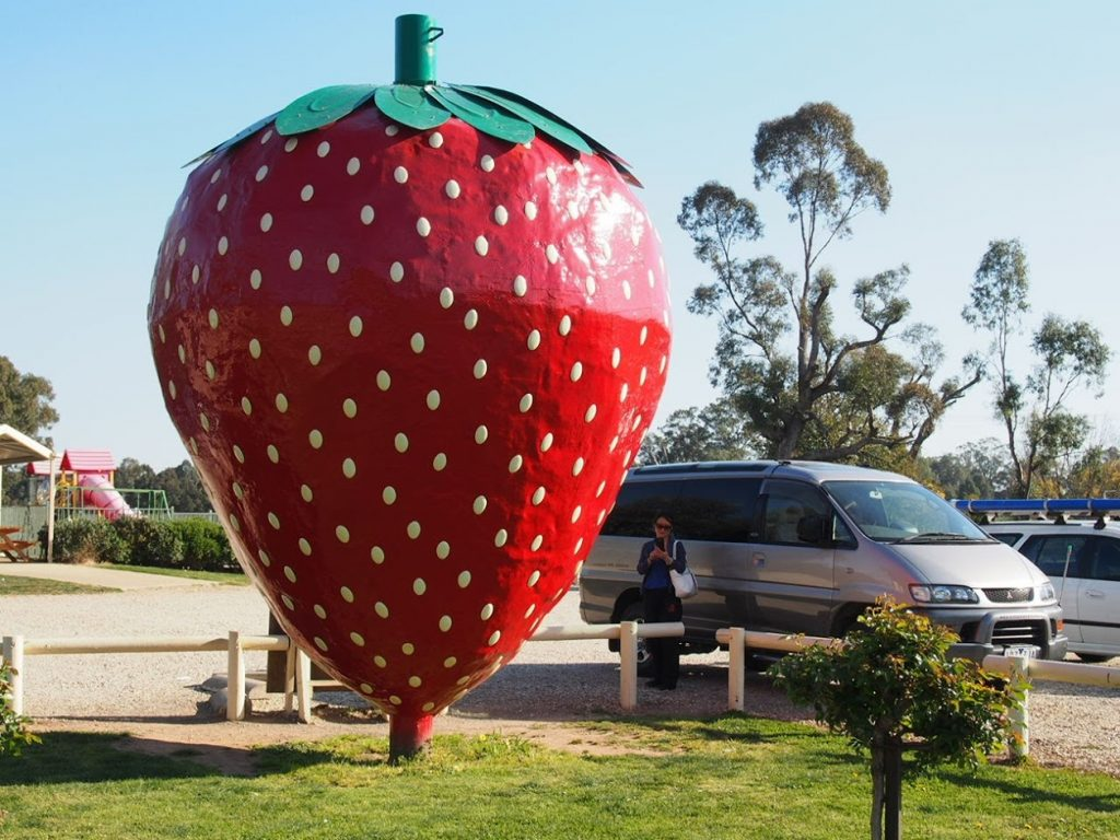 Big Strawberry